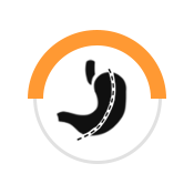 Gastric Sleeve Icon
